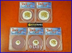 2014 CANADA REVERSE PROOF SILVER MAPLE LEAF With GOLD GILT ANACS RP70 5 COIN SET