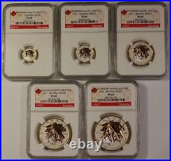 2014 Canada 5 Coin Silver Gilt Maple Leaf Proof Coin Set NGC-PF69