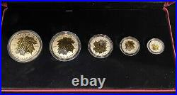 2014 Canadian Fractional Fine Silver Maple Leaf 5 Coin Set with Gold Plating