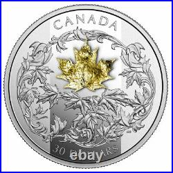 2018 Canada $30 Golden maple leaf coin 99.99% silver proof finish w gold leaf