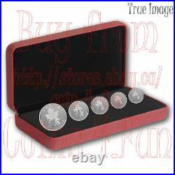 2022 A Radiant Crown Maple Leaf 5-Coin Pure Silver Proof Fractional Set Canada