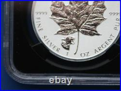 CANADA 2017 Silver Maple Leaf with Cougar Privy Mark (NGC PF70 First Releases)