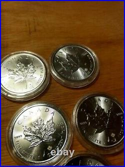 Canadian Maple leaf silver coin 1oz x 5 in capsules various years